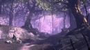 BnS - Music [Dark Forest]