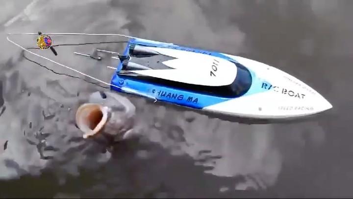 """Рыбалка Продолжается Здесь on Instagram: """"Когда очень хочется половить рыбу со своего катера, но пока на него не заработал 😂 -..."""