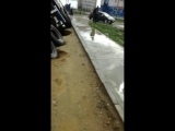 На 203 мкр после дождя размыло дорогу. 18.08.18г