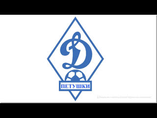 Динамо (Петушки) - Вяткино (Судогодский район) 1-0