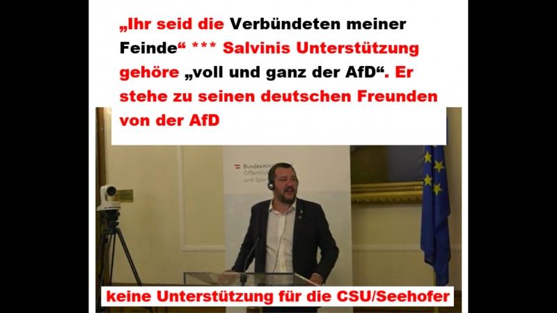 Salvini vs Seehofer und Merkel Junta