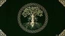 Musica Celtica per Meditare e Rilassarsi