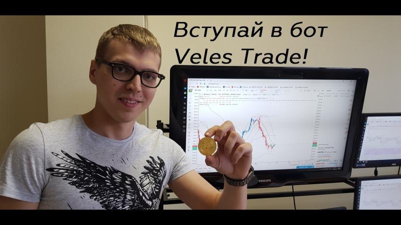 Команда Veles trade