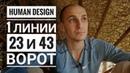 Дизайн Человека 23 и 43 ворота. 1 линии. Даниил Трофимов. Human Design