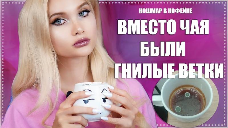 Отвратительная история из кофейни. Чай из гнилых веток  Лисса