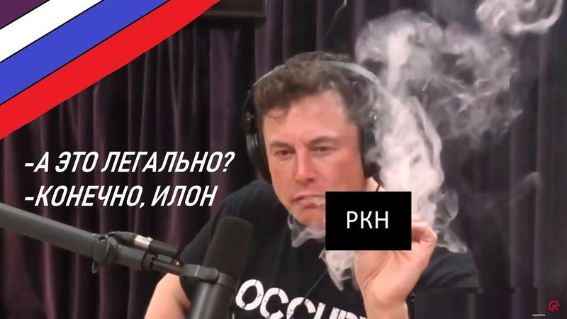 🚬 ИЛОН МАСК КУРИТ WEED 🥦 С ДЖО РОГАНОМ На русском
