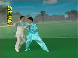 Боевые применения Чэньши тайцзицюань, Чжан Донву