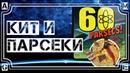 КИТ и ПАРСЕКИ ♊ 60 Parsecs