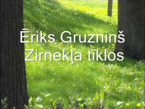 Ēriks Gruzninš - Zirnekļa tīklos