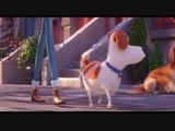 Тайная жизнь домашних животных 2 - Трейлер