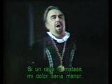 Vincenzo Sardinero - Cruda funesta smania... La pietade in suo favore ( Lucia di Lammermoor )