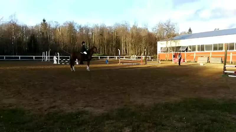 Скидан Дарья на полукровной Искре в соревнованиях по конкуру на 80см