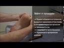 Рефлекторный массаж стоп ● Healthy Body®
