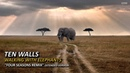 Ten Walls - Walking With Elephants [Four Seasons Extended Remix]