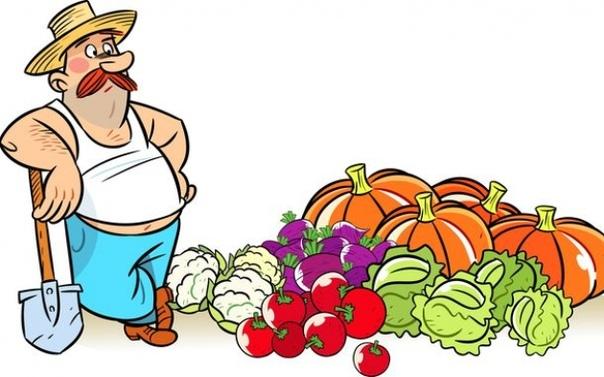 Как кислотность почвы влияет на урожай овощей