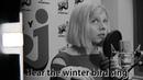 AURORA | WINTER BIRD | ACOUSTIC LYRICS