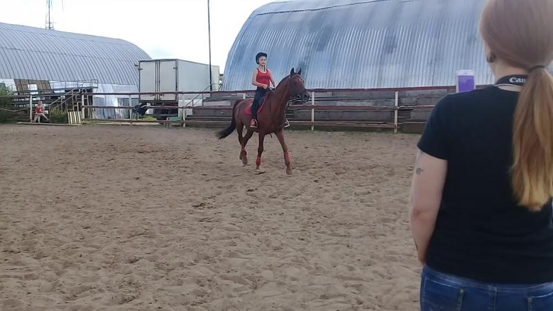 моя прыжковая тренировка