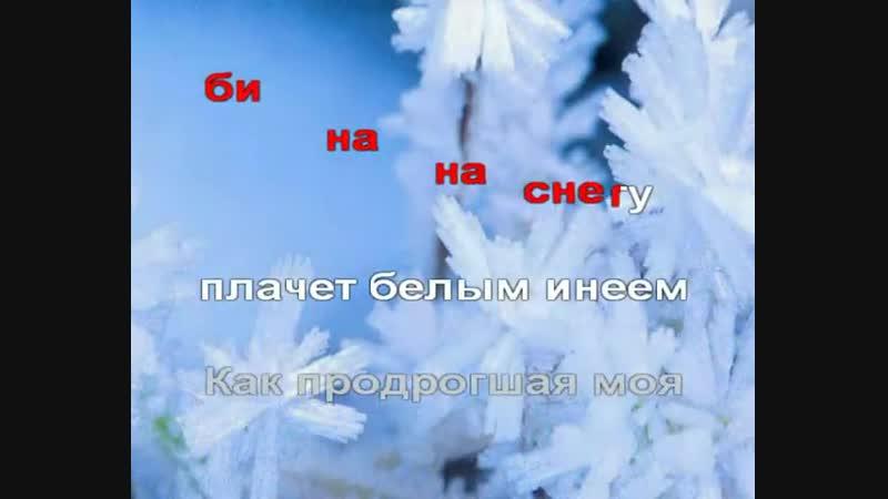 Трофим - Снегири.avi(караоке)