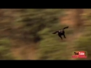 The Best Of Eagle Attacks 2018 Most Amazing Moments Of Wild Animal Fights Wil