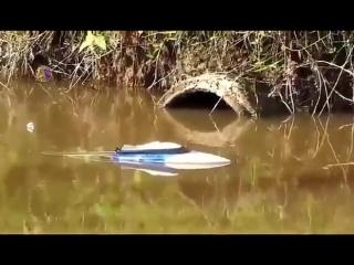Мы рыбачили как могли XD
