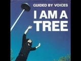 guided by voices i am a tree
