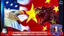 В ОТВЕТ НА САНКЦИИ США КИТАЙ БУДЕТ ВЫНУЖДЕН СЛОМАТЬ ВТО ➨ Новости мира ProTech
