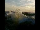 Амиго и море