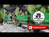 Ayzik Lil Jovid - Шахноз 2018 ST