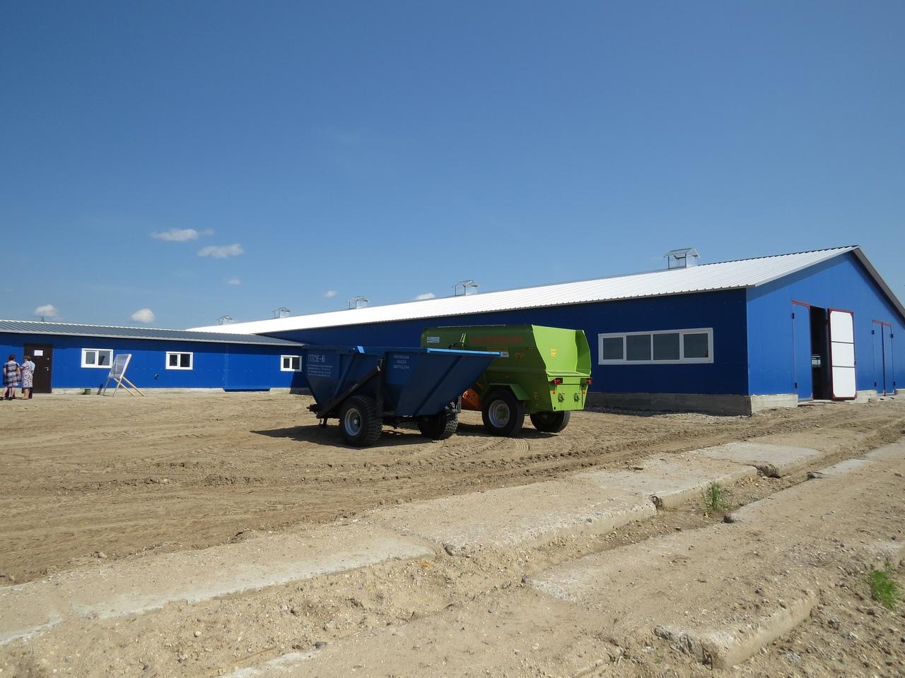 Новый животноводческий комплекс начал работу в Вожегодском районе