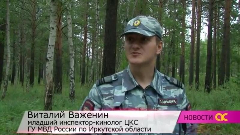 Иркутск, МВД, Полиция, Томико, кинологическая служба, раскрывает угоны авто