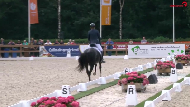 Edward Gal on Total US semi final Clipmyhorse.TV Nederland