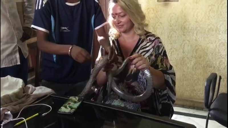 Оксана с дикой королевской коброй Индия