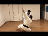 Bunkai Wa uke (mawashi uke) and blow (Boshiken or Teisho) / Sensei Totibadze 8 Dan karate