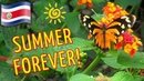 КОСТА РИКА: Страна вечного лета