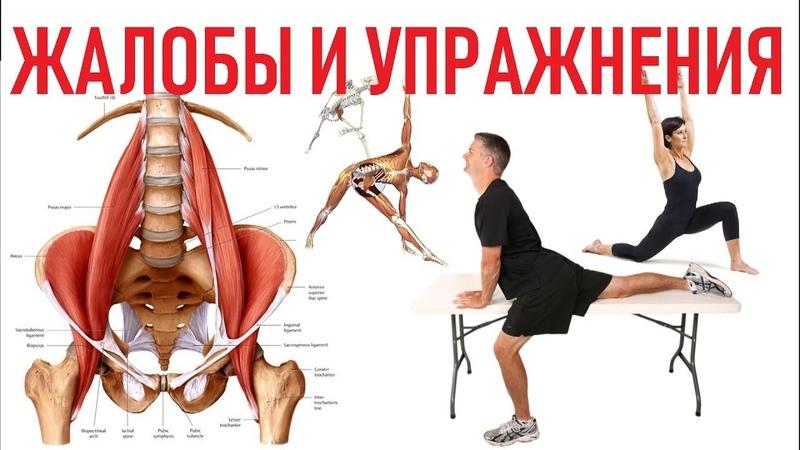 Все о подвздошно-поясничной мышце | Эффективные упражнения | Exercises for Iliopsoas