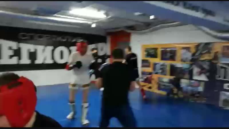 тайский бокс белый барс набережные челны