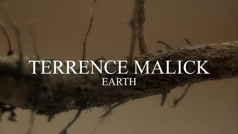 TERRENCE MALICK — EARTH