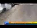 Паводок в Забайкалье рушит мосты и строения будто карточные домики
