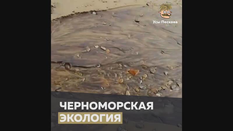 Черноморская экология