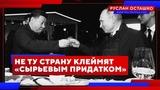 Не ту страну клеймят сырьевым придатком (Руслан Осташко)