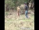 Отвесил оплеуху кенгуру