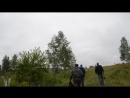 Вот так варварским способом заготавливают веники в Ачинском районе