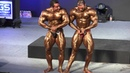 World 2012 - Below 90kg (Pose Down)