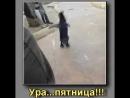 Video-505482de1583609a9a71868d4d82948f-
