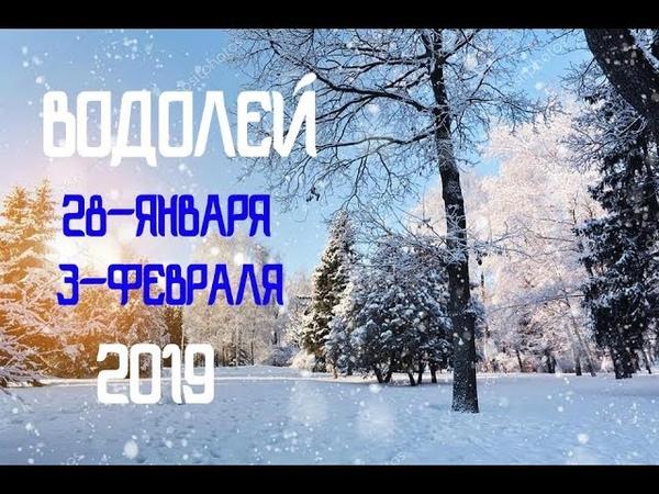 Таро прогноз на 28 января 3 февраля 2019 ВОДОЛЕЙ♒