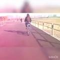 dt_229 video