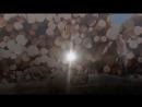 """""""РУССКАЯ ТАЙГА"""" документальный фильм Павла Пашкова"""
