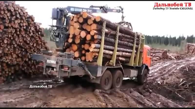 Лесовозы в деле