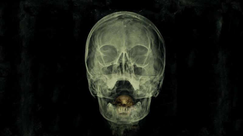 «Залив» 2012 ужасы, фантастика, триллер, мокьюментари