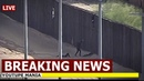 Breaking News Migrant Girls Fell Off Border Wall With Serious Back Injury Trump Warned
